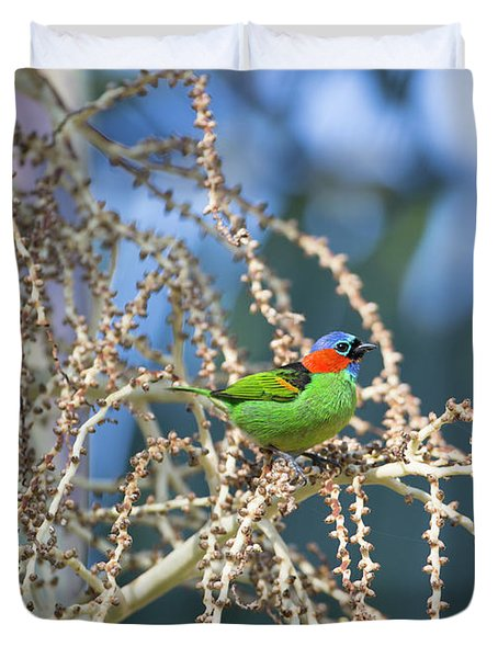 A Red-necked Tanager, Tangara Duvet Cover