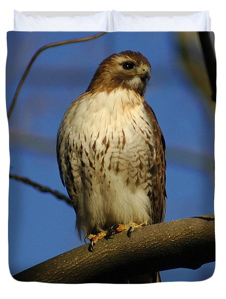 Duvet Cover featuring the photograph A Red Tail Hawk by Raymond Salani III