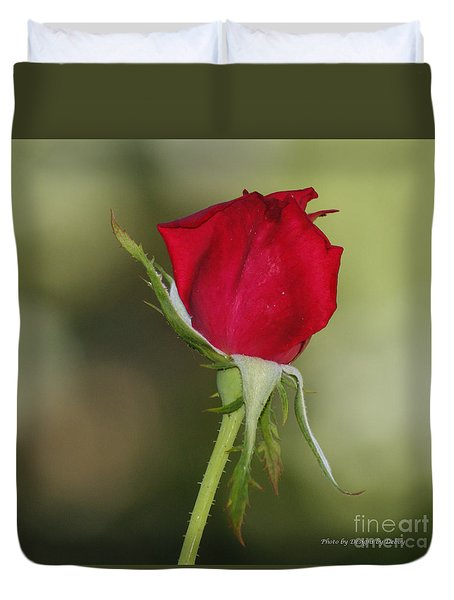 Duvet Cover featuring the photograph A Rose By Any Other Name by Debby Pueschel