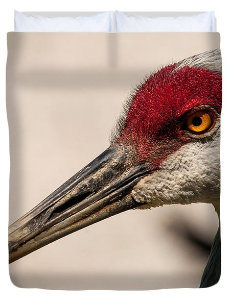 A Sandhill Crane Portrait Duvet Cover