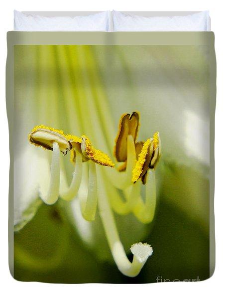 A Single Flower In Full Bloom Duvet Cover by Carol F Austin
