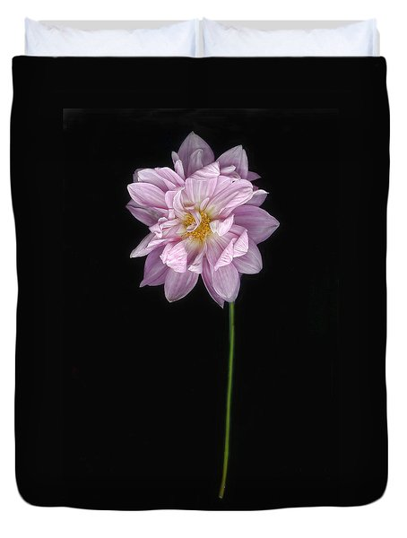 Duvet Cover featuring the photograph A Single Pink Dahlia  by Louise Kumpf