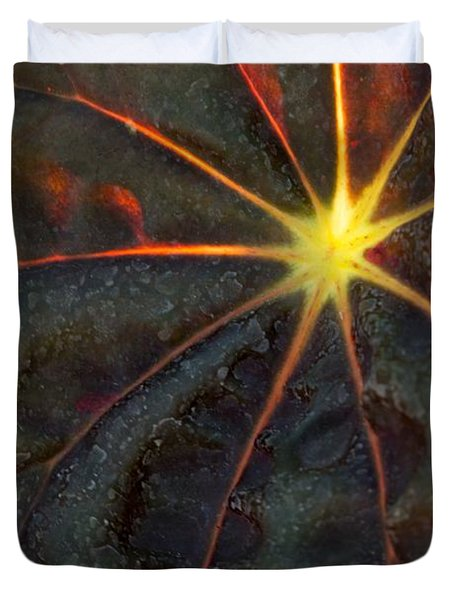 A Star Duvet Cover by Sabrina L Ryan
