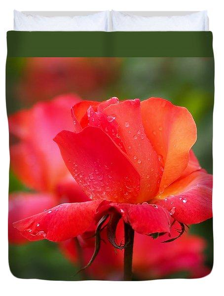 A Tintinara Rose In The Rain Duvet Cover by Rona Black