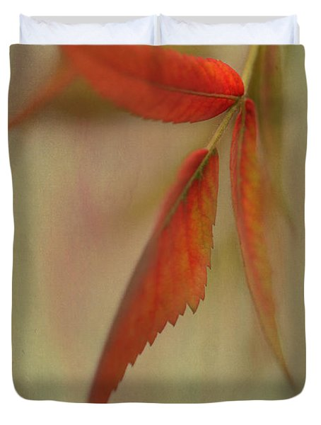 Duvet Cover featuring the photograph A Touch Of Autumn by Annie Snel