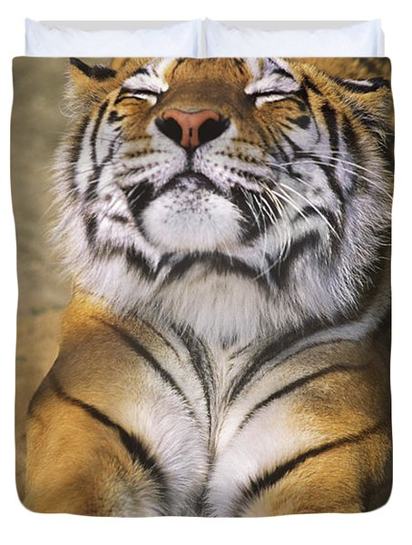 A Tough Day Siberian Tiger Endangered Species Wildlife Rescue Duvet Cover