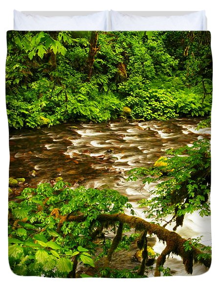 A View Of Eagle Creek Duvet Cover by Jeff Swan