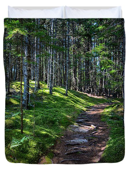 A Walk In The Woods Duvet Cover by John Haldane