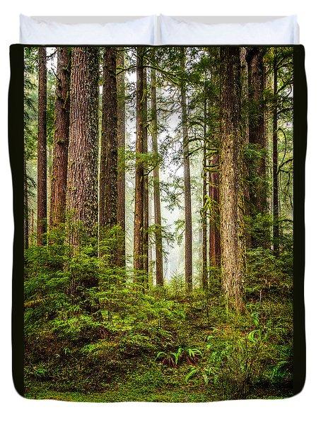 A Walk Inthe Forest Duvet Cover
