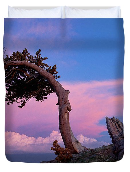 A Westerly Wind Duvet Cover