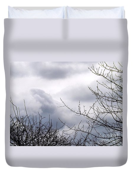 Duvet Cover featuring the photograph A Winter's Day by Robyn King