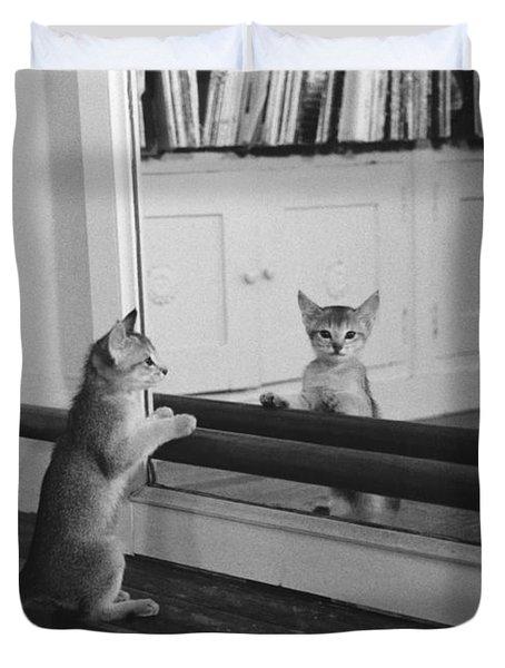 Abyssinian Kitten In Dance Studio Duvet Cover by Joan Baron