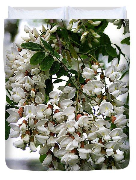 Acacia Tree Flowers Duvet Cover