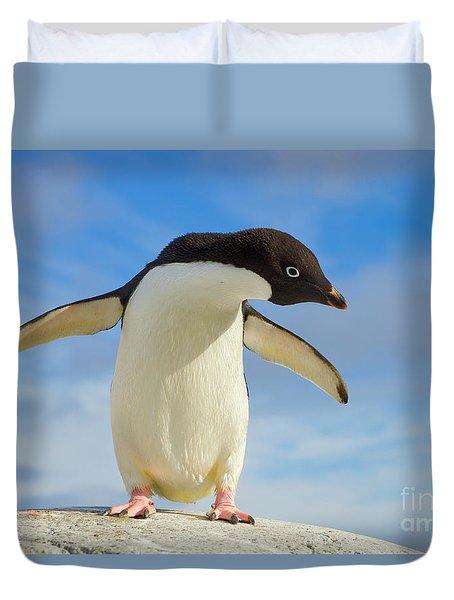 Adelie Penguin Flapping Wings Antarctica Duvet Cover by Yva Momatiuk John Eastcott