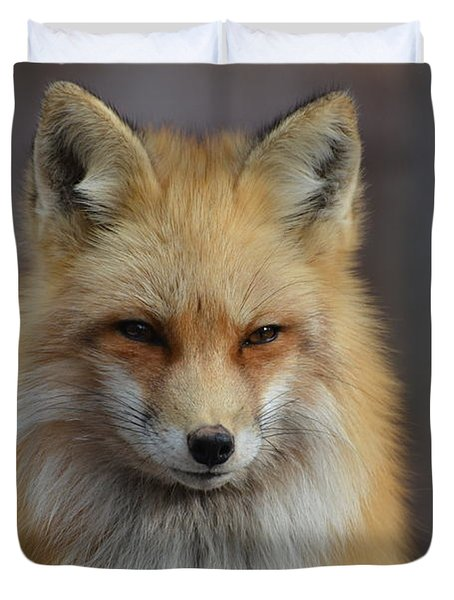 Adorable Red Fox Duvet Cover
