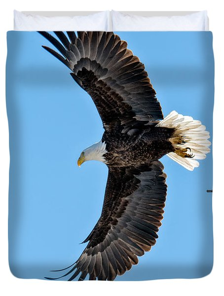 Adult American Bald Eagle Leaving A Branch Duvet Cover