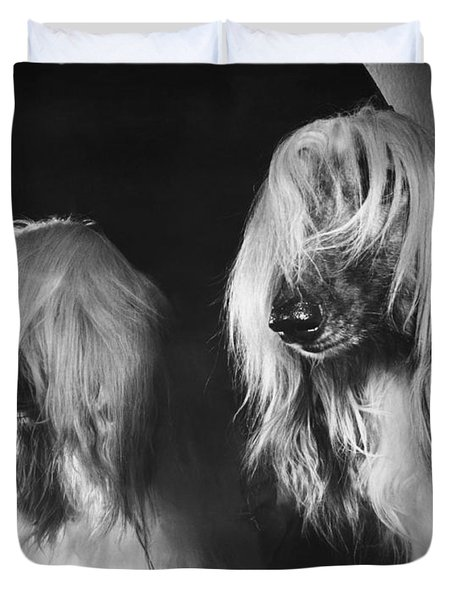 Afghan Hound Duvet Cover by ME Browning