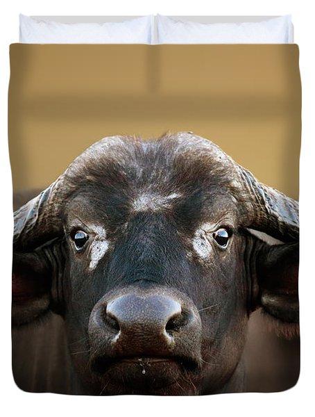 African Buffalo Cow Portrait Duvet Cover