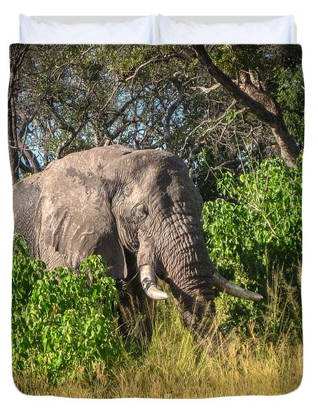 African Bush Elephant Duvet Cover