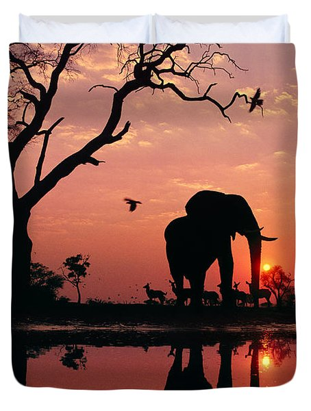 African Elephant At Dawn Duvet Cover by Frans Lanting MINT Images