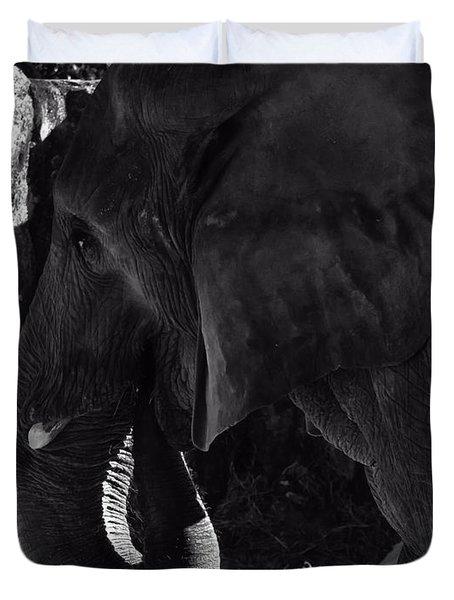 hills like white elephants pdf citation