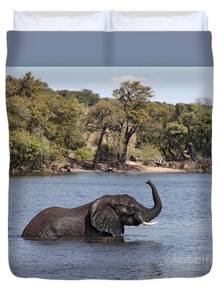 Duvet Cover featuring the photograph African Elephant In Chobe River  by Liz Leyden