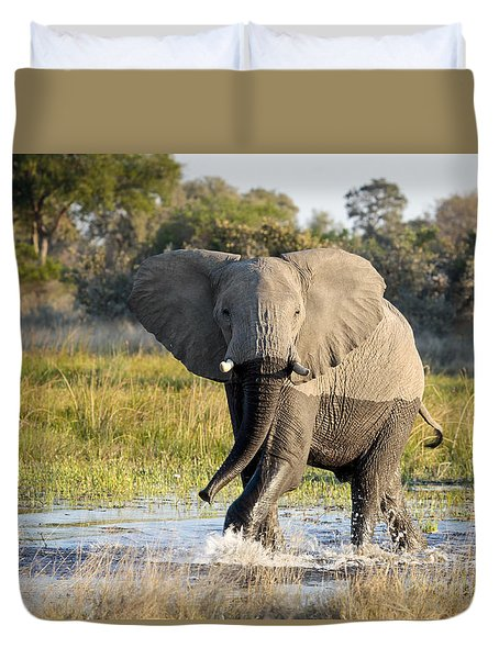 Duvet Cover featuring the photograph African Elephant Mock-charging by Liz Leyden