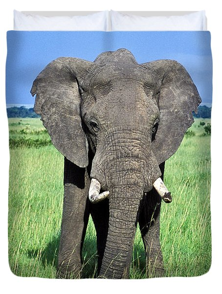 Duvet Cover featuring the photograph African Elephant by Tina Manley