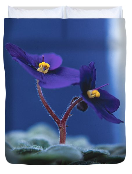 Duvet Cover featuring the photograph African Violet by Lana Enderle