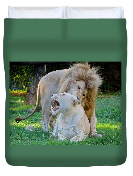 African White Lions Duvet Cover