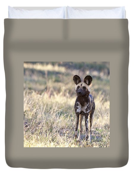 African Wild Dog  Lycaon Pictus Duvet Cover
