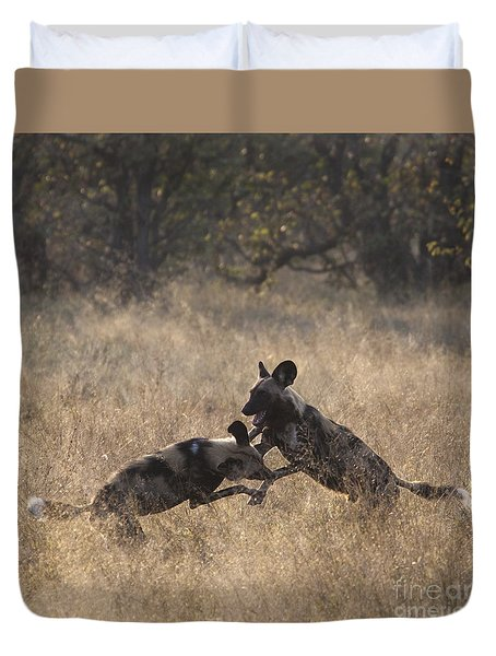 Duvet Cover featuring the photograph African Wild Dogs Play-fighting by Liz Leyden