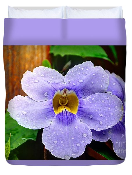 After The Rain Duvet Cover by Bob Hislop