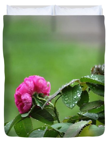 After The Rain Duvet Cover by Stacy C Bottoms
