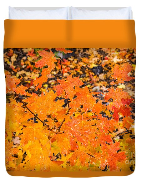 After The Rain Duvet Cover by Sue Smith