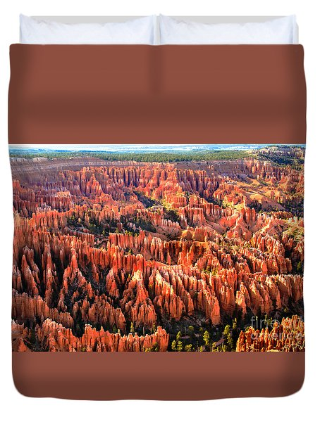 Afternoon Hoodoos Duvet Cover by Robert Bales