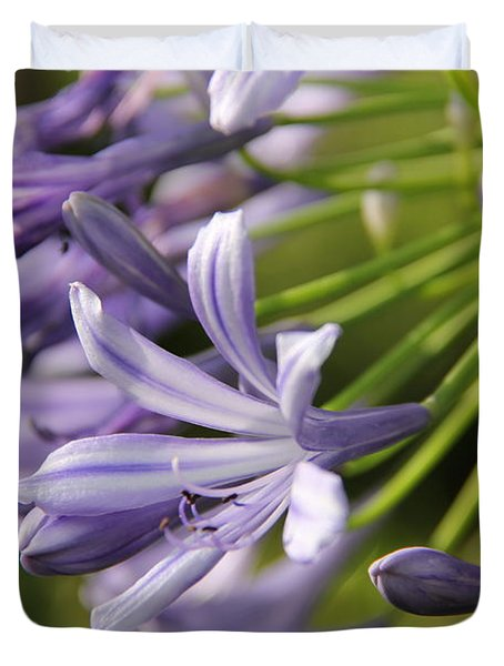 Agapanthus Flower Close-up Duvet Cover