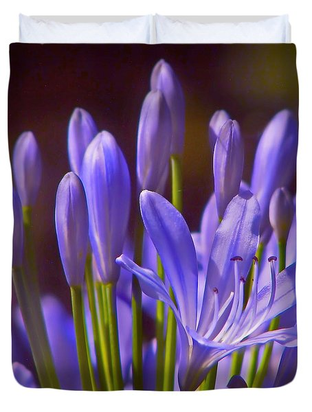 Agapanthus - Lily Of The Nile - African Lily Duvet Cover