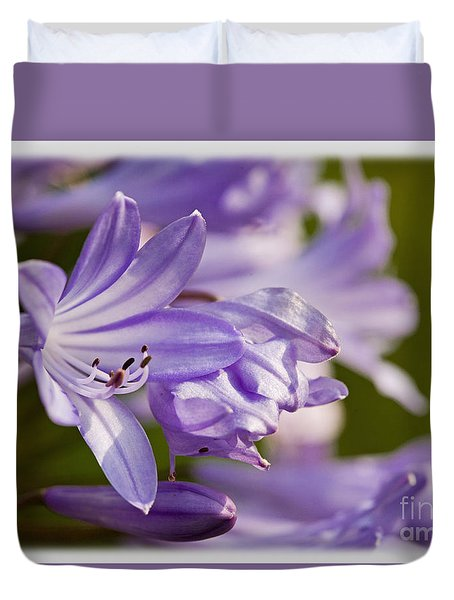 Duvet Cover featuring the photograph Agapanthus by Liz  Alderdice