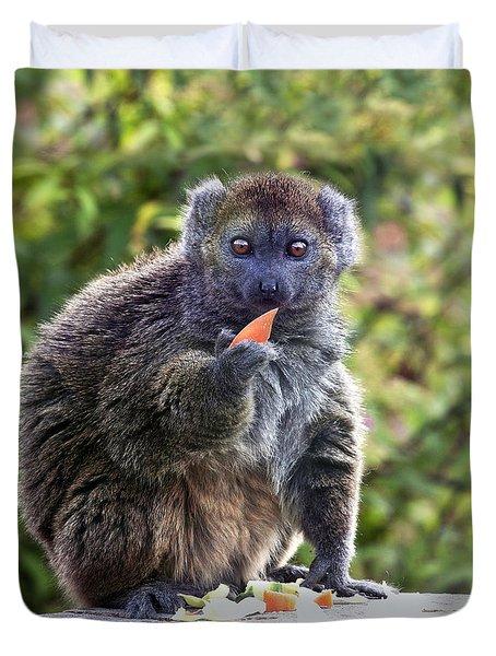 Alaotran Gentle Lemur Duvet Cover by Terri Waters