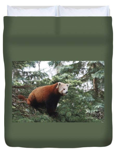 All Alone Duvet Cover by Judy Whitton