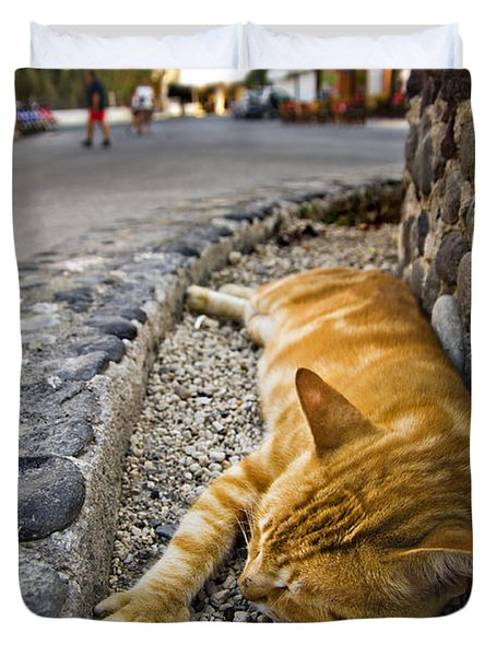 Duvet Cover featuring the photograph Alley Cat Siesta by Meirion Matthias