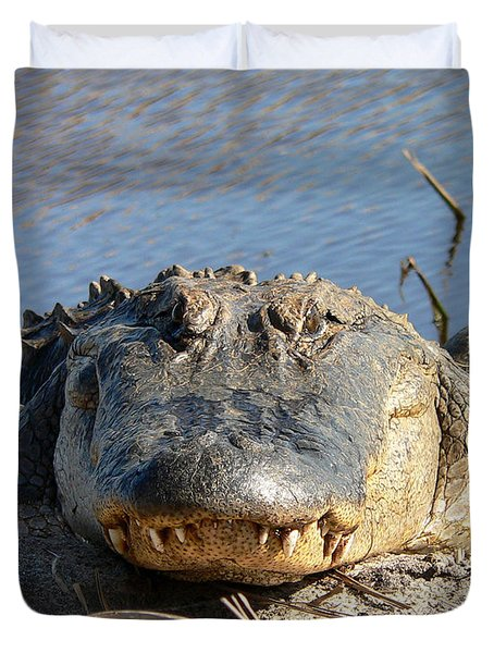 Alligator Approach Duvet Cover by Al Powell Photography USA