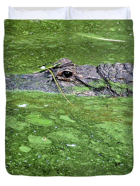 Alligator In Swamp Duvet Cover by Aimee L Maher Photography and Art Visit ALMGallerydotcom