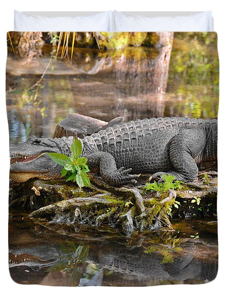 Alligator Mississippiensis Duvet Cover by Christine Till