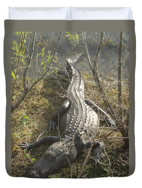 Duvet Cover featuring the photograph Alligator by Robert Nickologianis