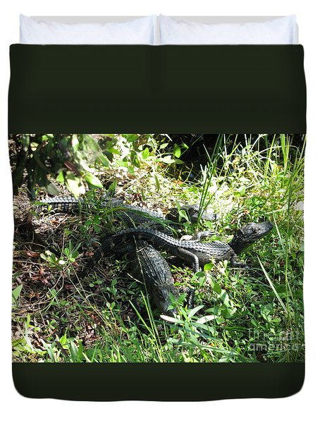 Alligatorbabys Waiting For Mommy Duvet Cover by Christiane Schulze Art And Photography