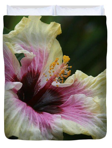 Aloha Aloalo Tropical Hibiscus Haiku Maui Hawaii Duvet Cover by Sharon Mau