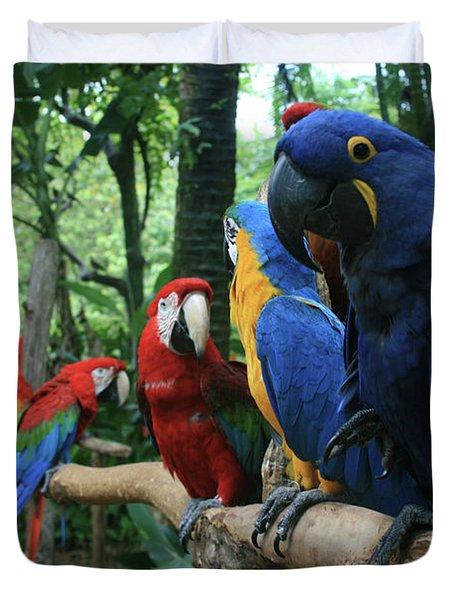 Aloha Kaua Aloha Mai No Aloha Aku Beautiful Macaw Duvet Cover