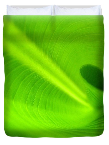 Along The Curve Duvet Cover by C Ray  Roth